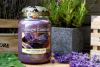 Dried Lavender & Oak
